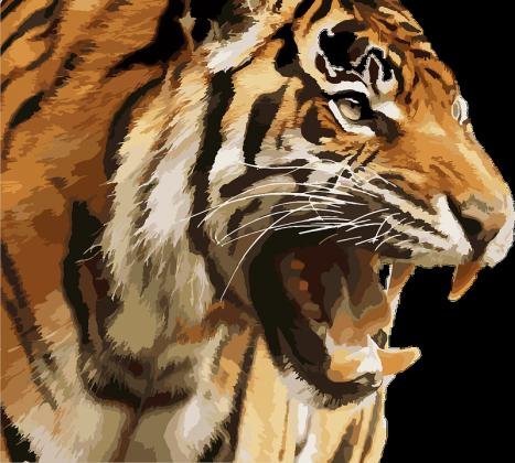 Тигров и змей запретят держать в квартирах — главное в Москве за неделю
