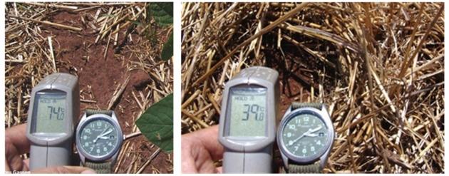 Рис. 20. Сравнение температуры поверхности открытой почвы (слева) и прикрытой расти-тельными остатками (справа)