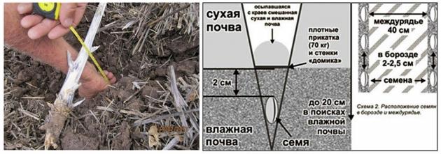 Рис. 23. Разрез почвы до 20 см (слева) и схема посева в борозду на сухих почвах по австралийской Нулевой технологии (справа)