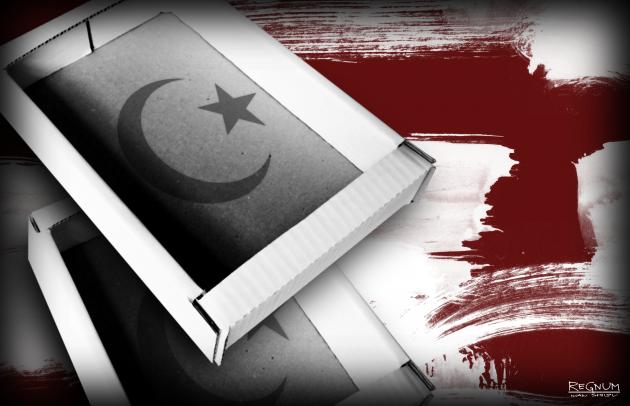 Труба через Турцию: оливки, газопровод ТАР и «большая политика» Баку