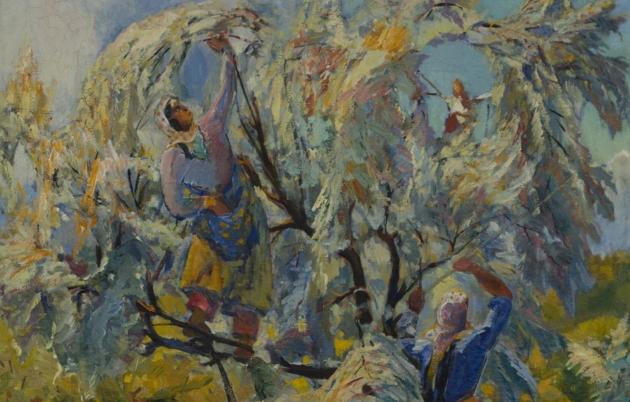 Сбор пшата. Седрак Аракелян. 1936