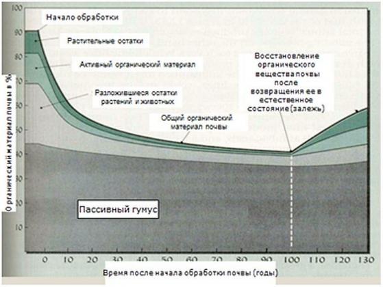 Рис. 3. Структура гумуса. Пассивный и активный (лабильный) гумус