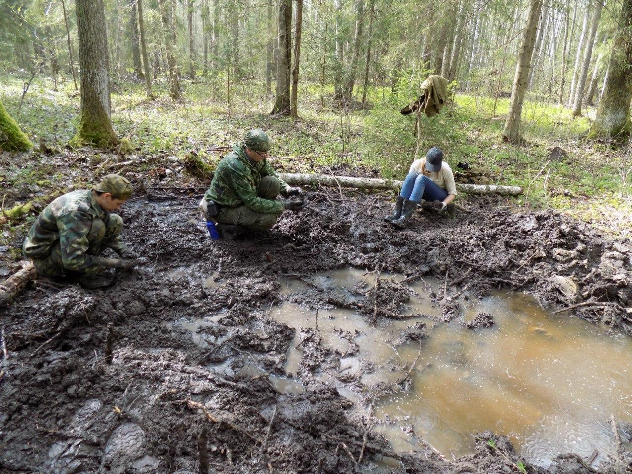 Отряд может работать в течение месяца в лесу, не выезжая за его пределы