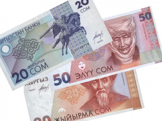 Киргизский сом