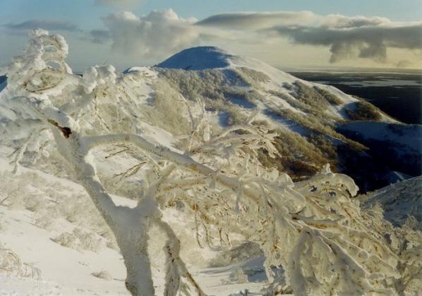 Пушистая и теплая сахалинская зима