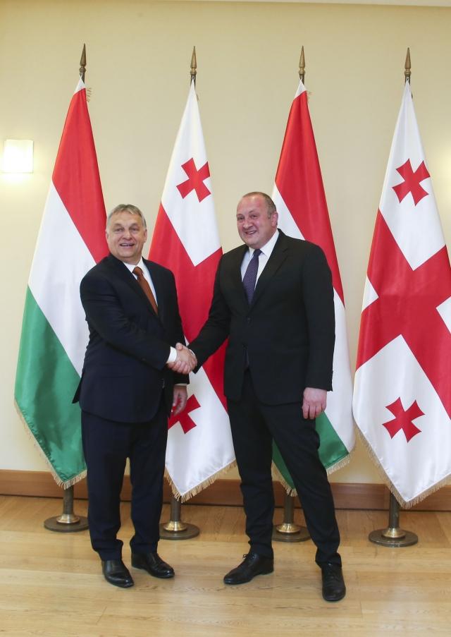 Президент Грузии принял премьер-министра Венгрии