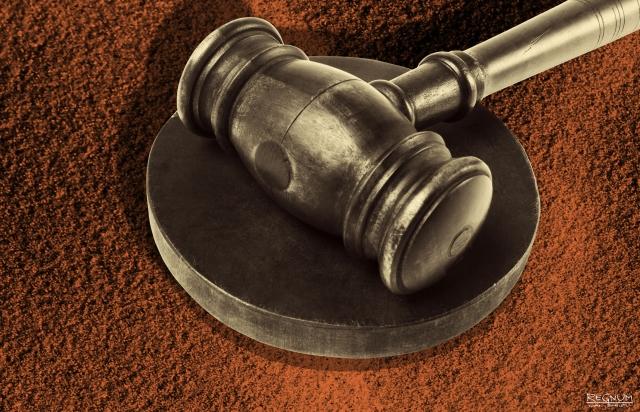 """На Камчатке суд рассмотрит дело о закрытии отделения «Свидетелей Иеговы""""*"""