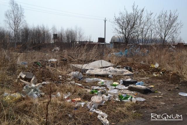 Губернатор Хабаровского края приказал ликвидировать все стихийные свалки