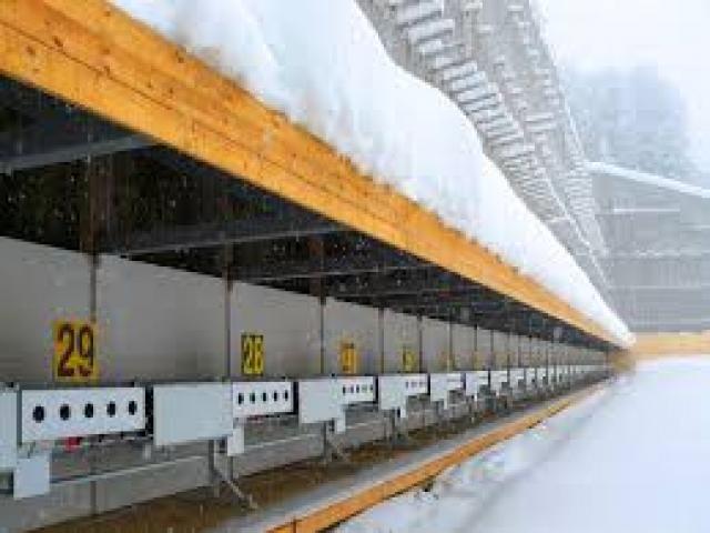 В Ярославской области началось строительство биатлонного центра