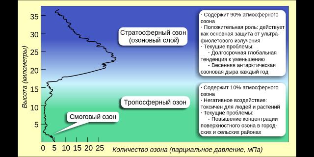 Распределение озона по высоте