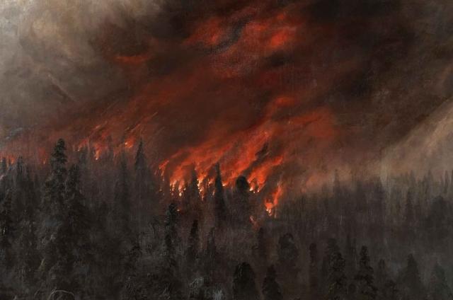 В Красноярском крае бушуют лесные пожары на площади 15 тыс. га