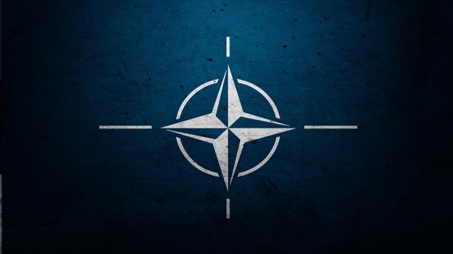НАТО опасается присоединять к себе Грузию