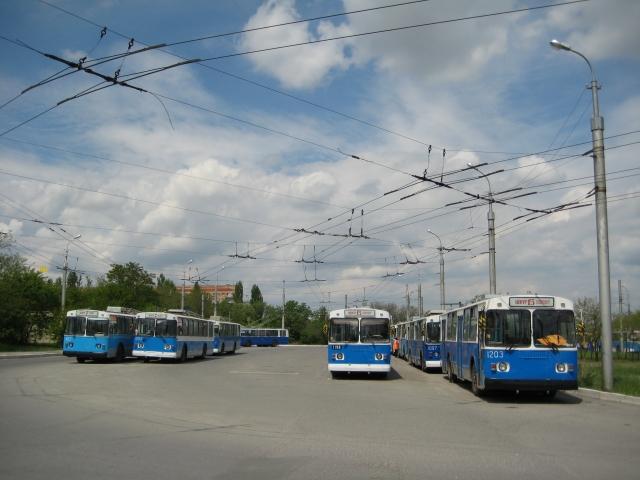 Автобусы и троллейбусы в Волгограде: конкуренция или сотрудничество?