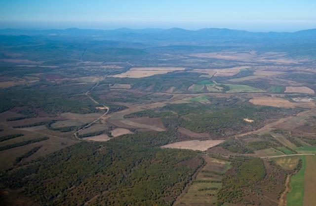 «Миклушевский лукавит» — многодетная мать о выделении земли в Приморье