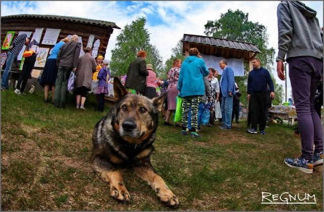 Село Винницы ежегодно принимает праздник «Древо жизни»