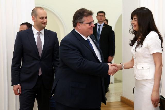 Литва продолжит поддержку интеграции Грузии с ЕС и НАТО