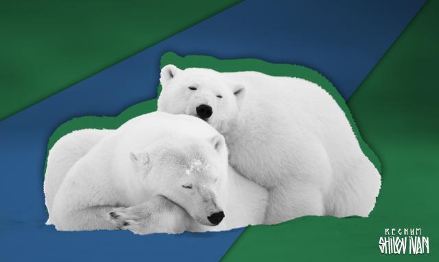 Арктика: битва откладывается?