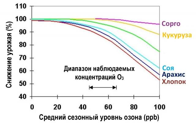 Рис. 13. Влияние озона на урожай сельскохозяйственных культур