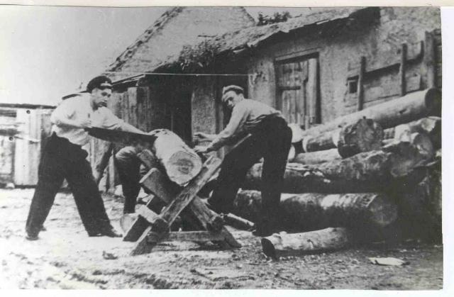 Виктор Пацаев (справа) пилит дрова в Нестерове. 1950-е годы