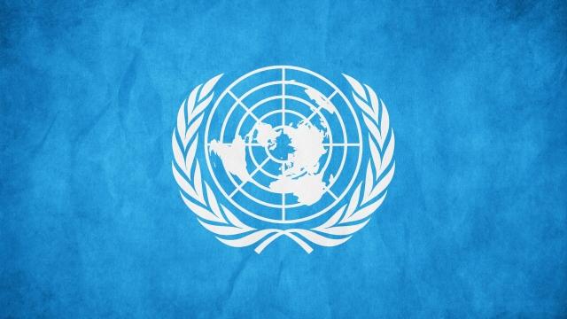 ООН: Число беженцев за 2016 год составило 65,6 млн человек