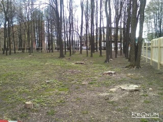 В Ярославле мэрии не дали разместить динозавров в городском парке