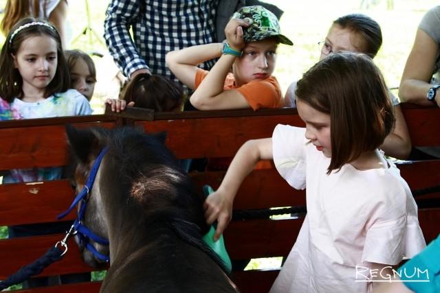 Посетителей обучали правилам ухода за пони