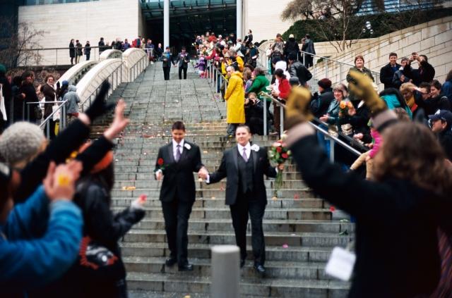 «Альтернатива для Германии» опротестует закон об однополых браках