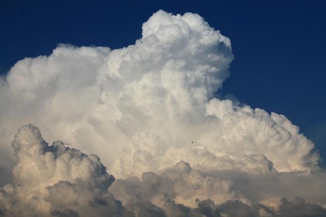 Гидрометцентр о заявлении Жириновского: «Общий прогноз по дождю был»