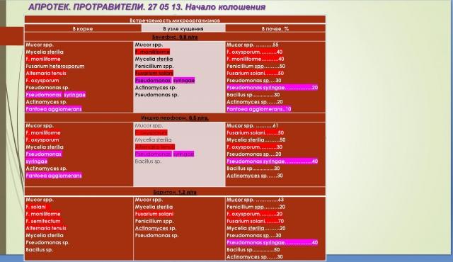 Рис. 3. Сравнение эффективности химических протравителей различных фирм-производителей (Н.И. Будынков, ВНИИФ)