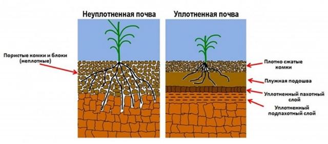 Рис. 13. Изменение структуры почвы при уплотнении