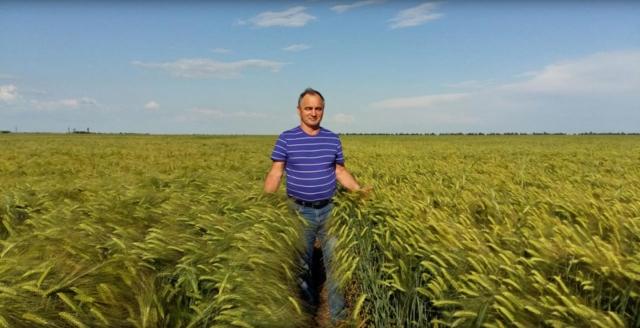 Российское земледелие в поисках правильных приоритетов развития