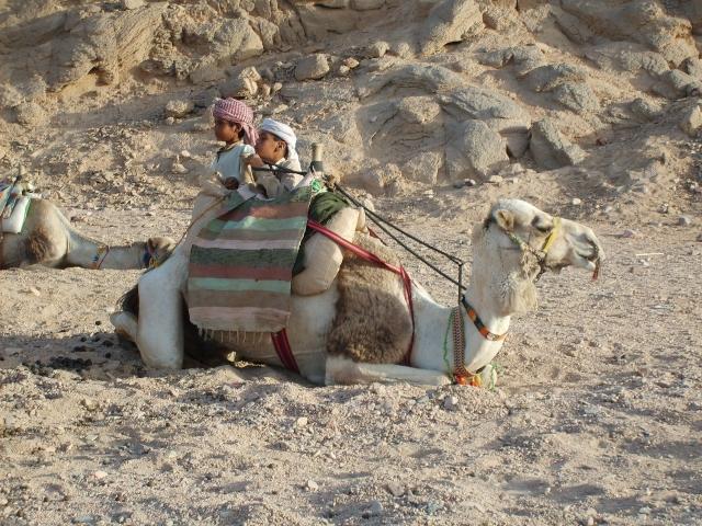 В Египте не боятся негативного влияния инцидента в Хургаде на турпотоки