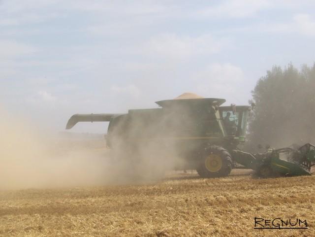 Страда деревенская: поля агрохолдинга «Гудвилл»: в 2016 году урожайность озимых была рекордной — 80 центнеров с гектара