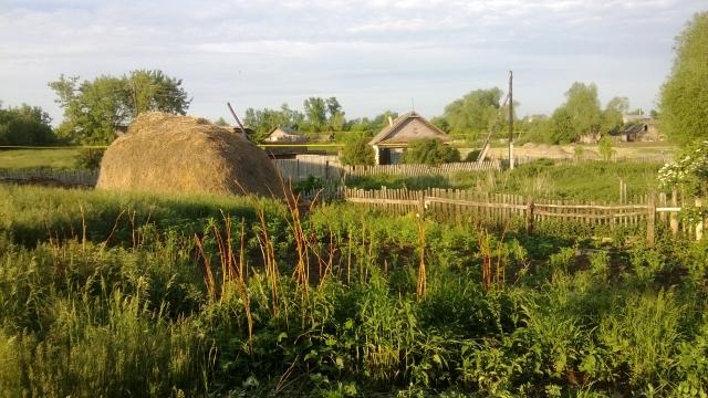 Агропромышленный парк «Услон» построят в татарской деревне