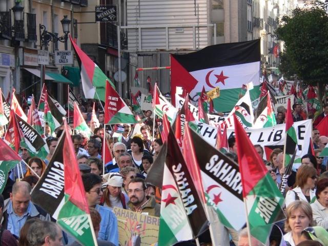 Западная Сахара готова бороться против оккупации Марокко всеми методами