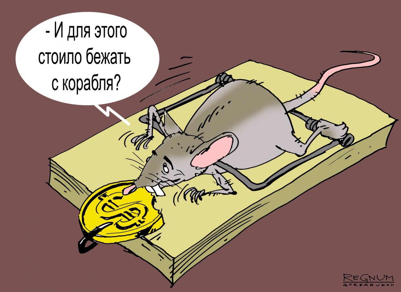 Анекдот: Крысы первыми бегут с тонущего корабля, но люди…