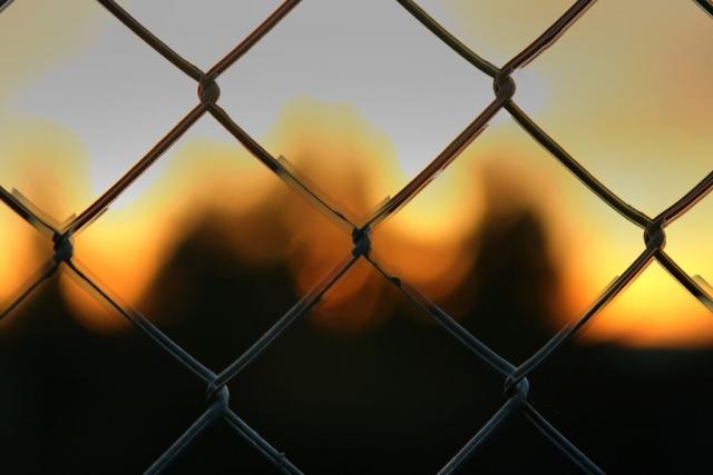 Серебренников может лишиться свободы на 10 лет