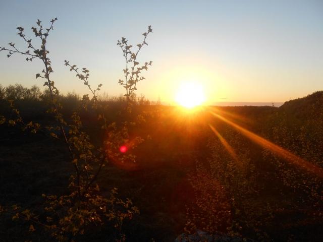 В выходные московский регион попрощается с летом