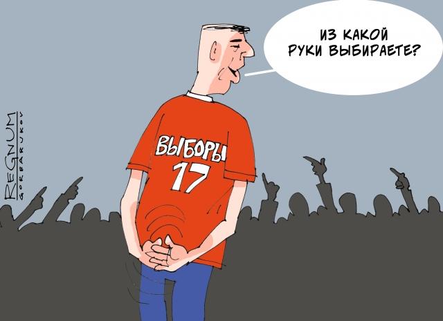«Выходка» Радаевой на выборах Радаева: Саратовская ЦИК жалоб не получала