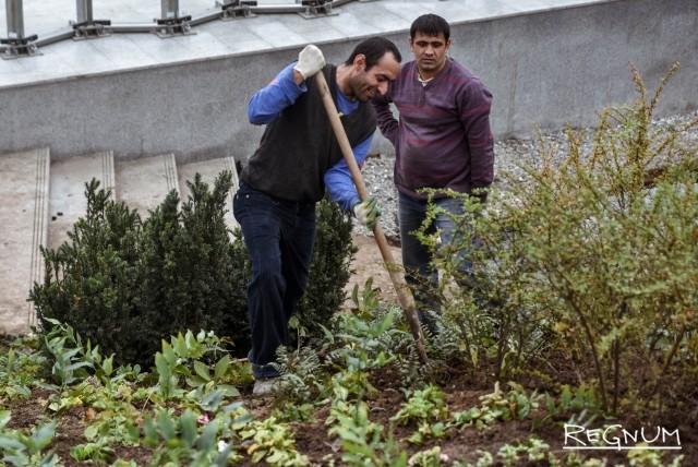 Работники парка «Зарядье» заново высаживают цветы