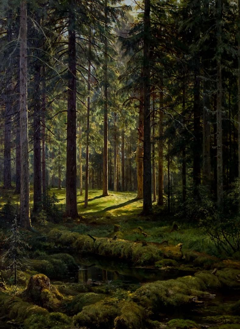 папке лес живопись картинки пожаловать лабораторию