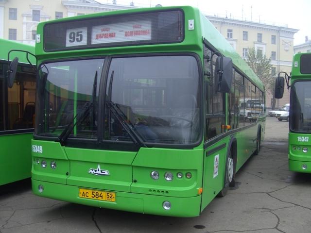 Автобусы «МАЗ»