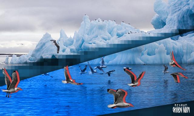 Экологию Арктики должны восстанавливать зарабатывающие на ней компании