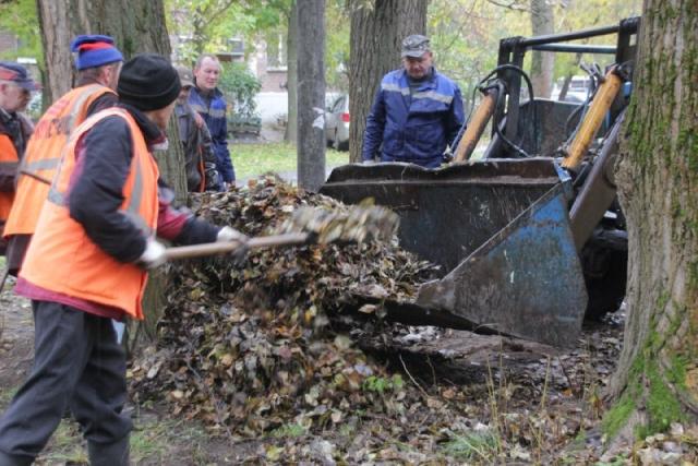 Мэр Ярославля поручил перед снегопадами тренироваться на листьях
