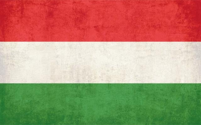 МИД Венгрии возмущен словами поверенного в делах США в стране