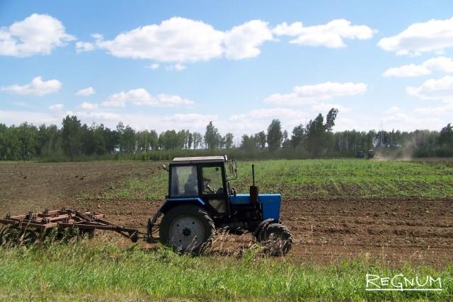 Дожди разорили аграриев Новгородской области на 75 млн рублей