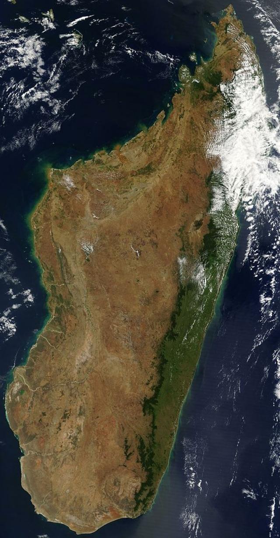 На Мадагаскаре число жертв чумы приближается к 100