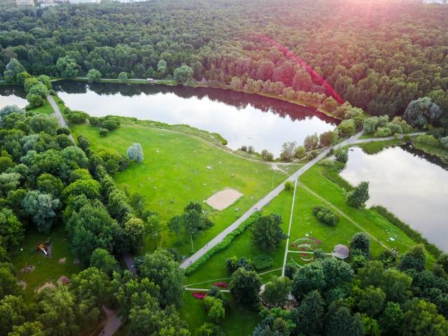 Начали с разгрома: за уничтожение парковых прудов Москва заплатит 1,3 млрд