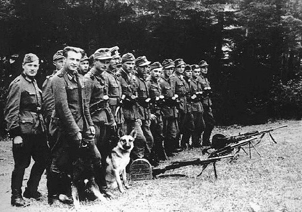 УПА (организация, деятельность которой запрещена в РФ). 1943