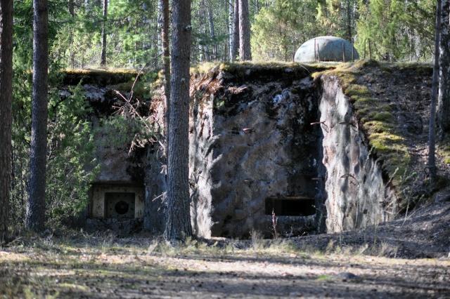 Линию Маннергейма в Ленобласти предложили сделать туристическим объектом